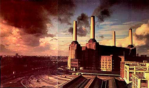 pink floyd animals 3