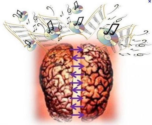 Влияние музыки на человеческий мозг