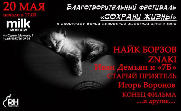 Благотворительный фестиваль в защиту бездомных животных