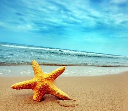 Где отдыхают звезды?