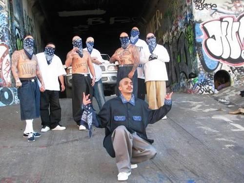 Мексиканские власти штрафуют музыкантов, поющих о мафии