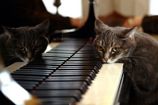 В Красноярске любой желающий может поиграть на бесплатных пианино