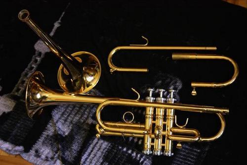 Приморские музыканты получили золотые музыкальные инструменты